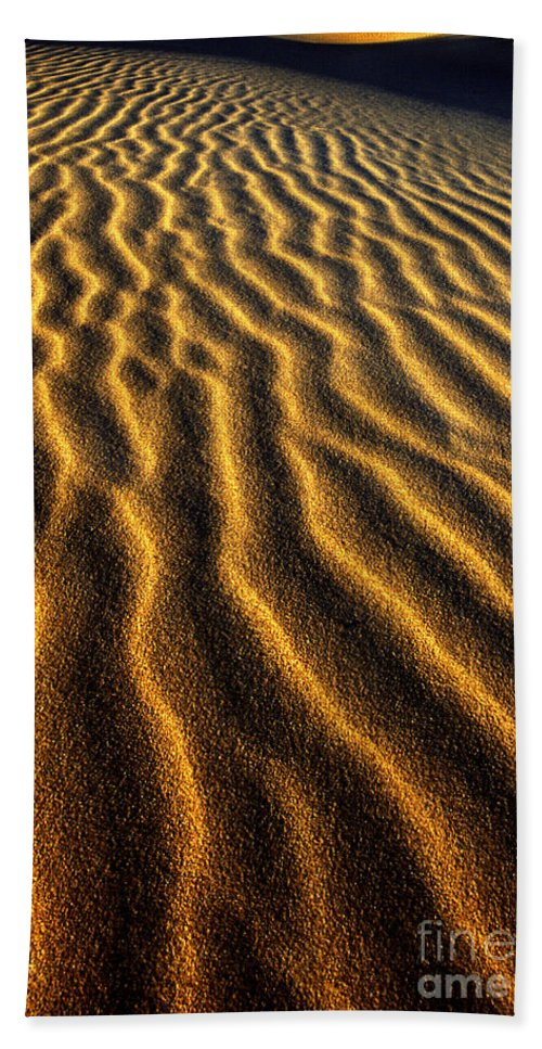 North America Beach Towel featuring the photograph Ripples Oregon Dunes National Recreation Area by Dave Welling