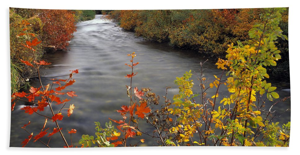 Idaho Scenics Beach Towel featuring the photograph River Color by Leland D Howard