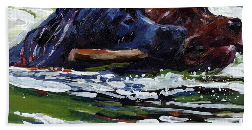 Black Lab Beach Towel featuring the painting River Run by Molly Poole