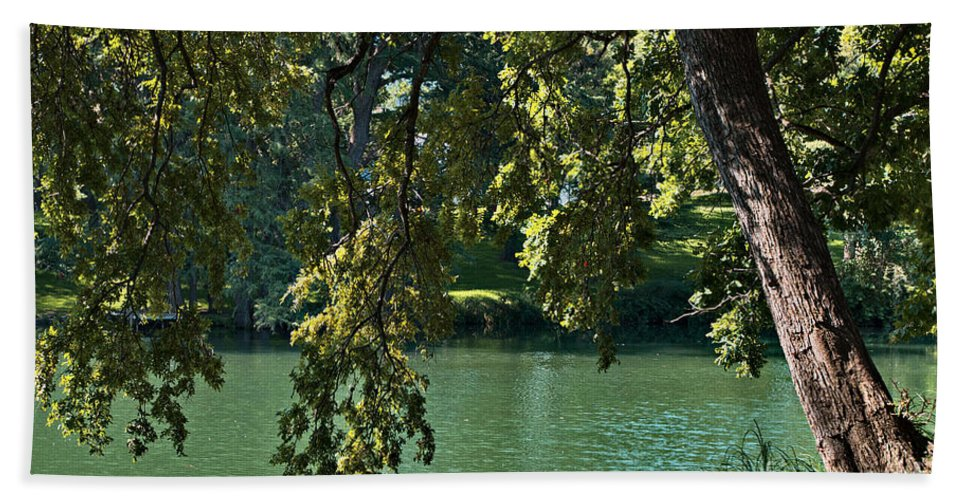River Beach Towel featuring the photograph River View by Gary Richards
