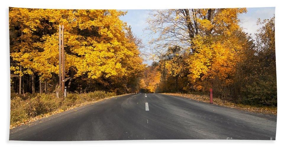 Asphalt Beach Towel featuring the photograph Road In Autumn Forest by Michal Boubin