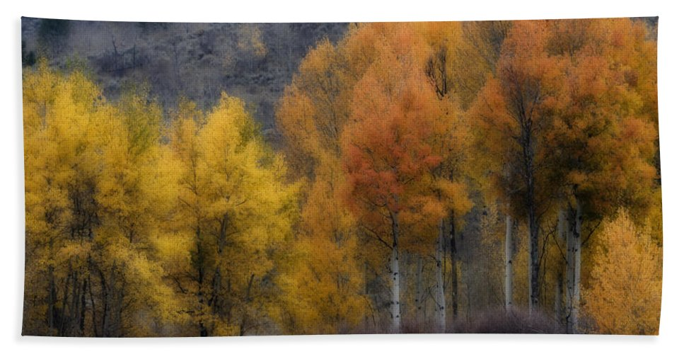 Rocky Mountain Fall Beach Towel featuring the photograph Rocky Mountain Fall by Wes and Dotty Weber