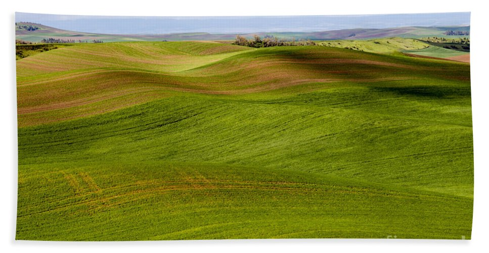 Palouse Area Beach Towel featuring the photograph Rolling Idaho Farmland by Bob Phillips