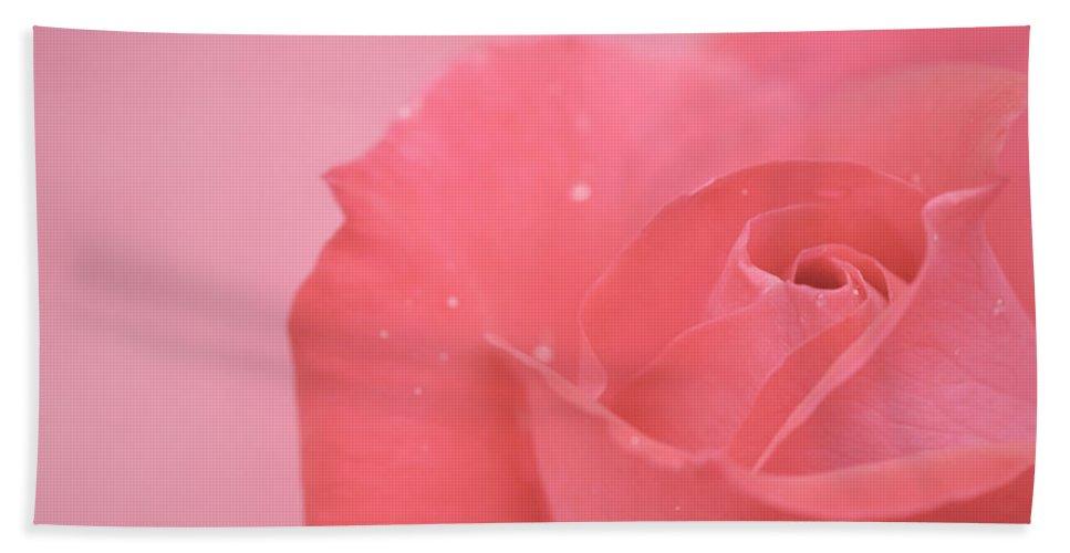 Pink Beach Towel featuring the photograph Romance by Lisa Knechtel