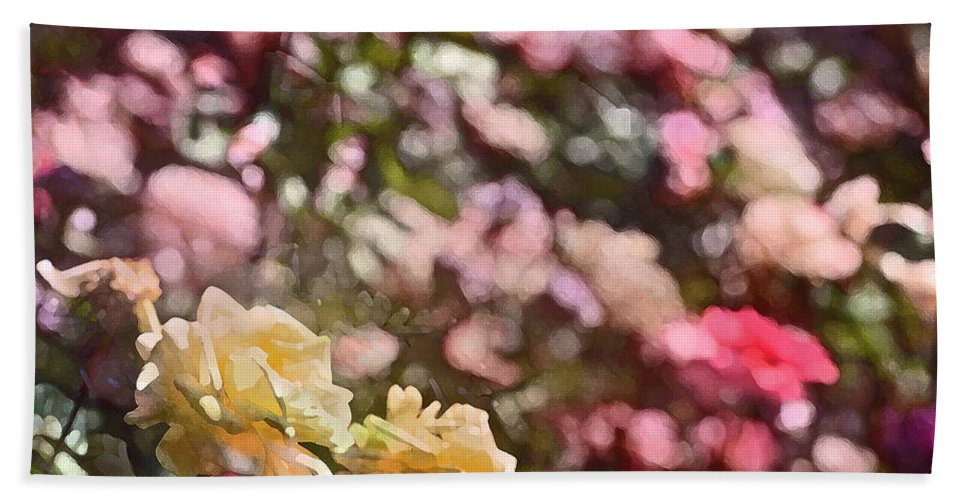 Floral Beach Towel featuring the photograph Rose 209 by Pamela Cooper