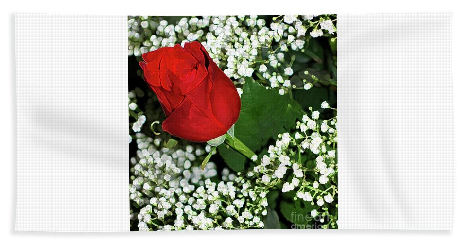 Rose Beach Towel featuring the photograph Rose And Baby's Breath by Kathleen Struckle