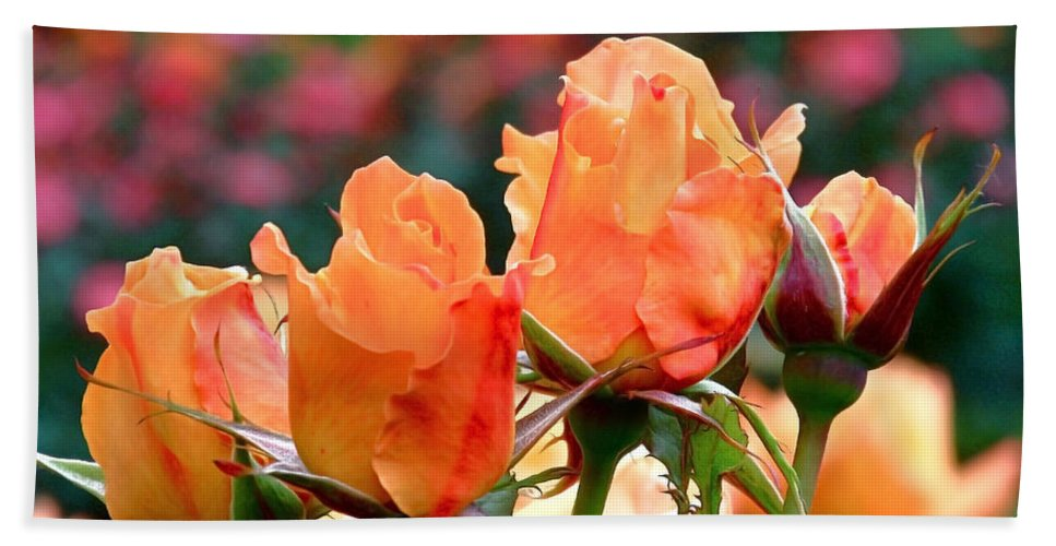 Roses Beach Towel featuring the photograph Rose Bunch by Rona Black