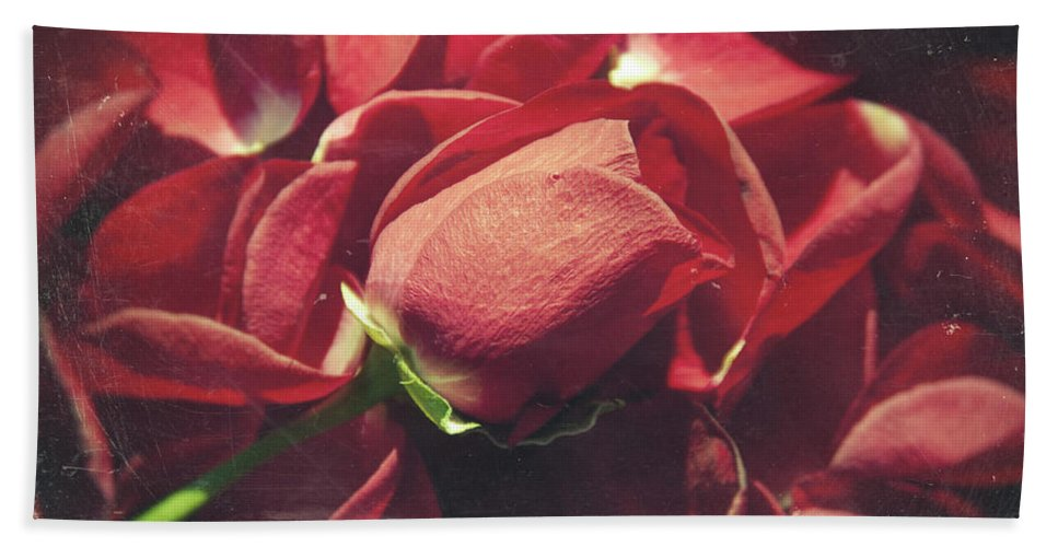 Flower Beach Towel featuring the photograph Rose by Zapista