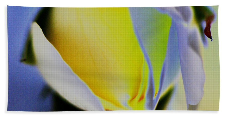 Yellow Beach Towel featuring the digital art Rose Yellow by Carol Lynch