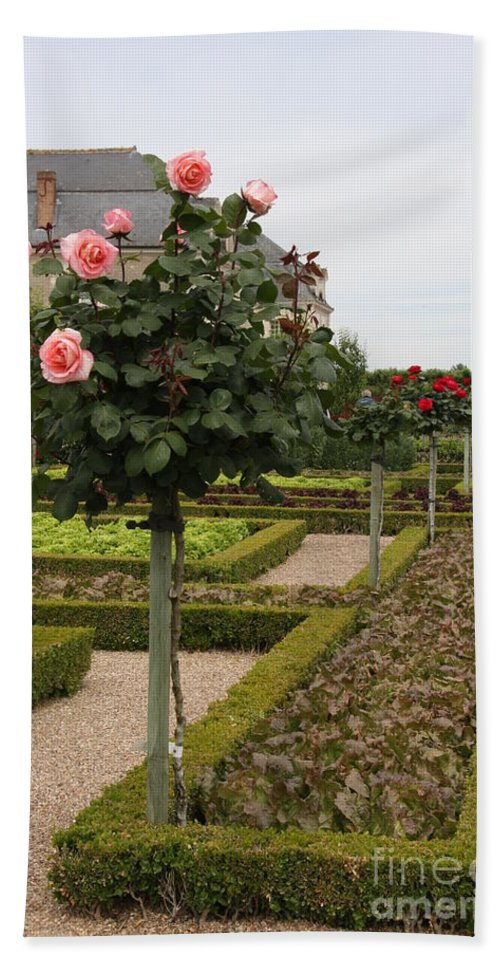 Roses Beach Towel featuring the photograph Roses And Salad - Chateau Villandry by Christiane Schulze Art And Photography