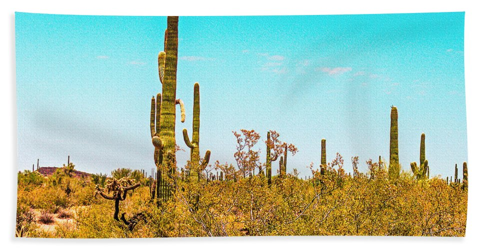 Saguaro Beach Towel featuring the photograph Saguaro Cactus In Organ Pipe Monument by Bob and Nadine Johnston