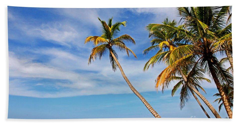 Panama Beach Towel featuring the photograph San Blas Dreaming by Bob Hislop
