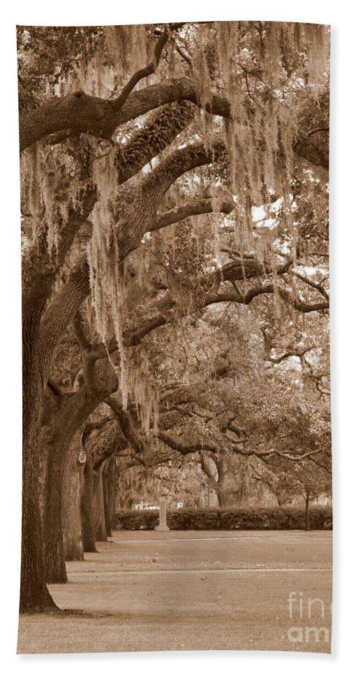 Savannah Beach Towel featuring the photograph Savannah Sepia - Emmet Park by Carol Groenen