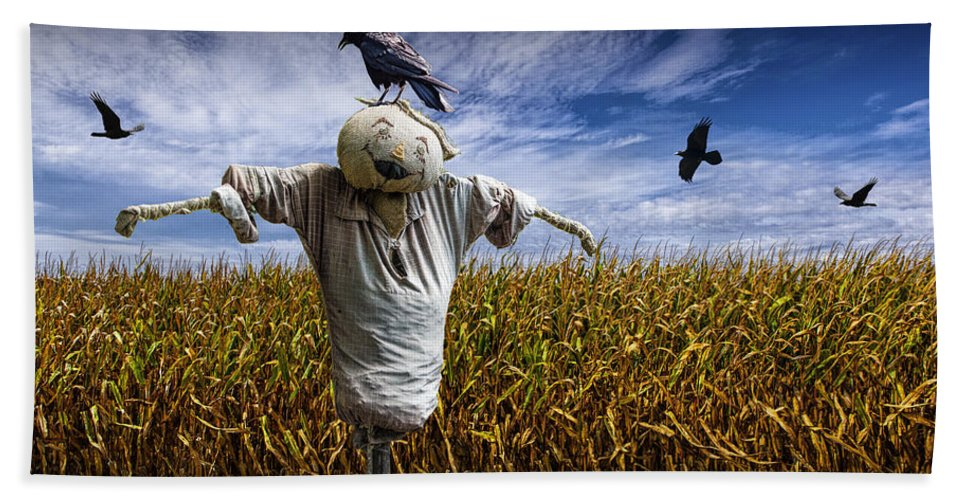 Scarecrow With Black Crows Over A Cornfield Beach Towel for Sale by