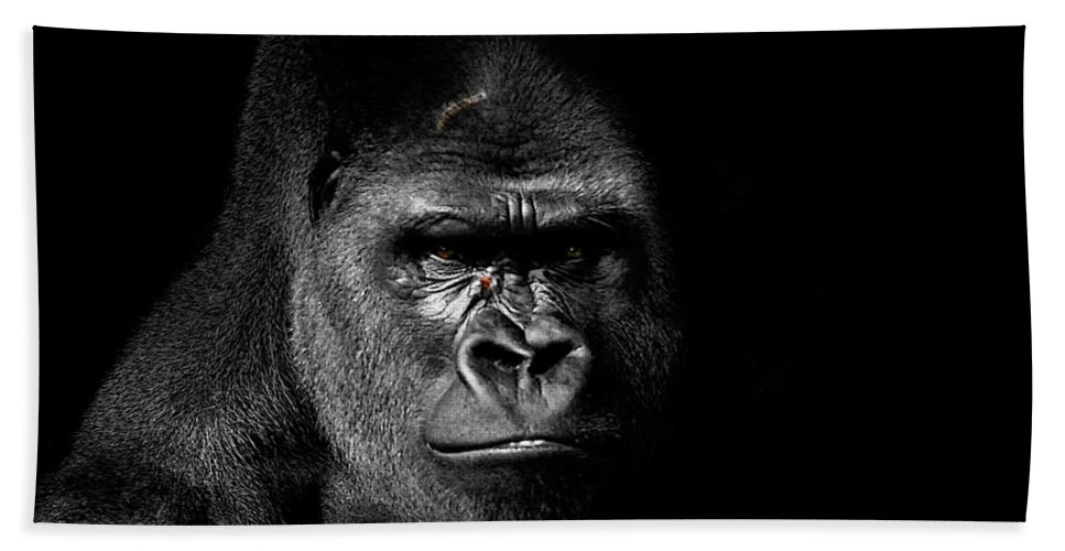 Gorilla Photograph Beach Towel featuring the photograph Scarface by Jim Garrison