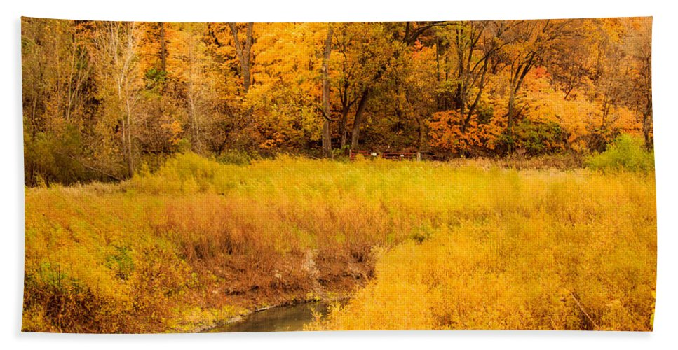 Autumn Beach Towel featuring the photograph Scene Of Gold by Shari Brase-Smith