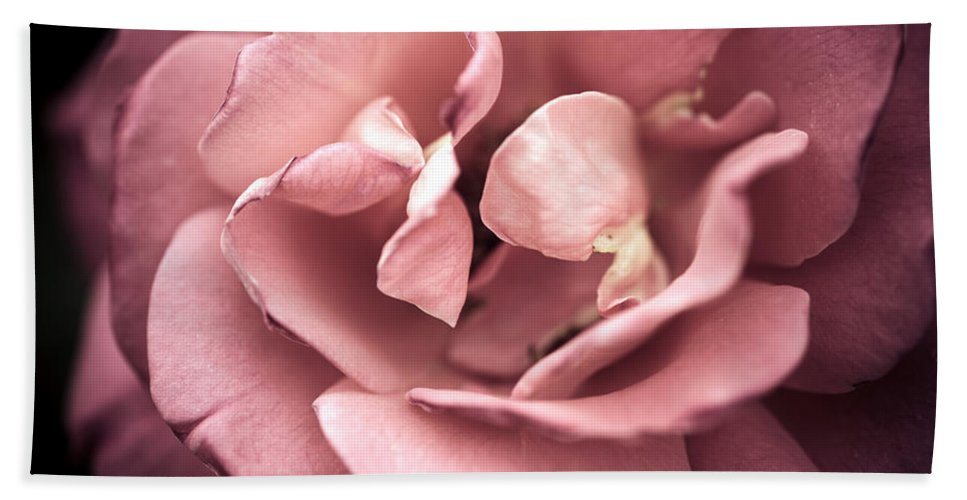 Bumble Bee Beach Towel featuring the photograph Scent Of A Rose by Sennie Pierson