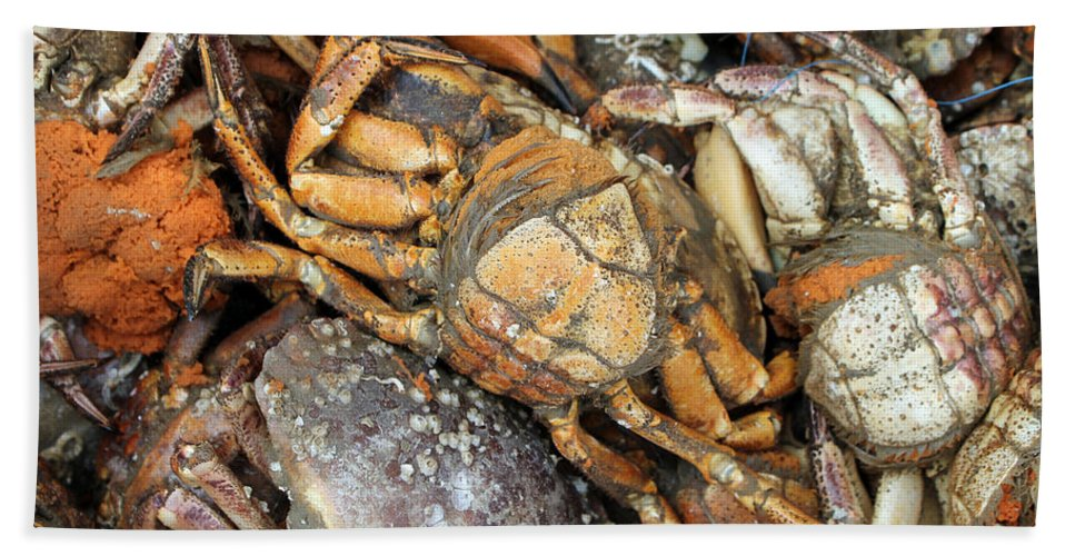 Crayfish Ocean Market Fresh Crab Crustacean Photograph Sea Seafood Scissors Beach Towel featuring the photograph Seafood by Steve K