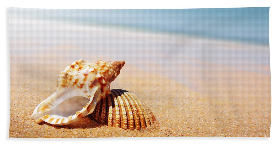 Abstract Beach Towel featuring the photograph Seashell And Conch by Carlos Caetano