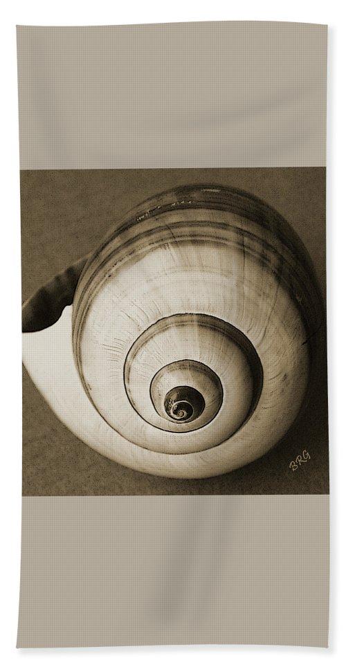 Seashell Beach Towel featuring the photograph Seashells Spectacular No 25 by Ben and Raisa Gertsberg