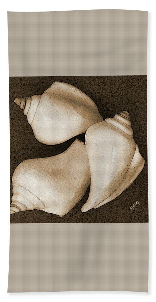 Seashell Beach Towel featuring the photograph Seashells Spectacular No 4 by Ben and Raisa Gertsberg