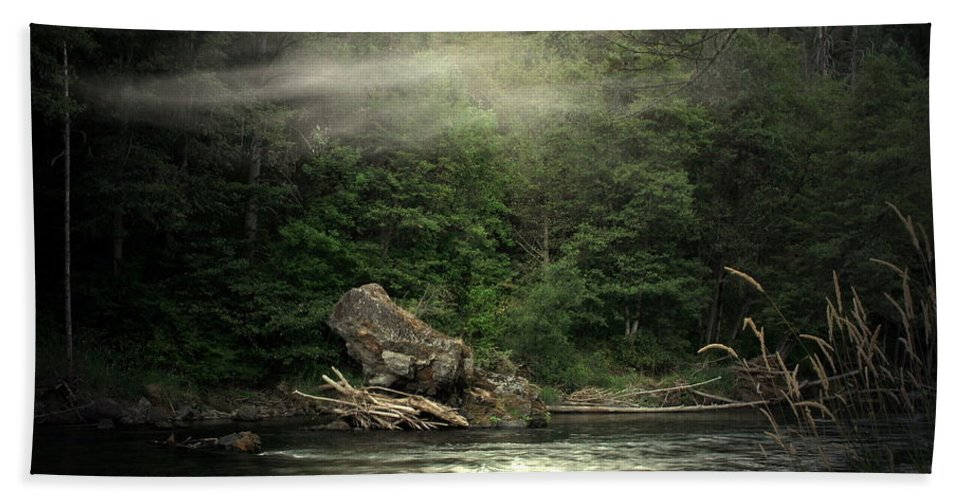 River Beach Towel featuring the photograph Seclusion On The Trinity by Joyce Dickens
