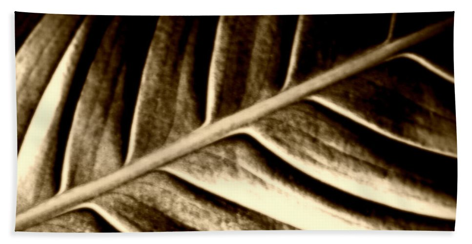 Leaf Beach Towel featuring the photograph Sepia Leaf by Tina Meador