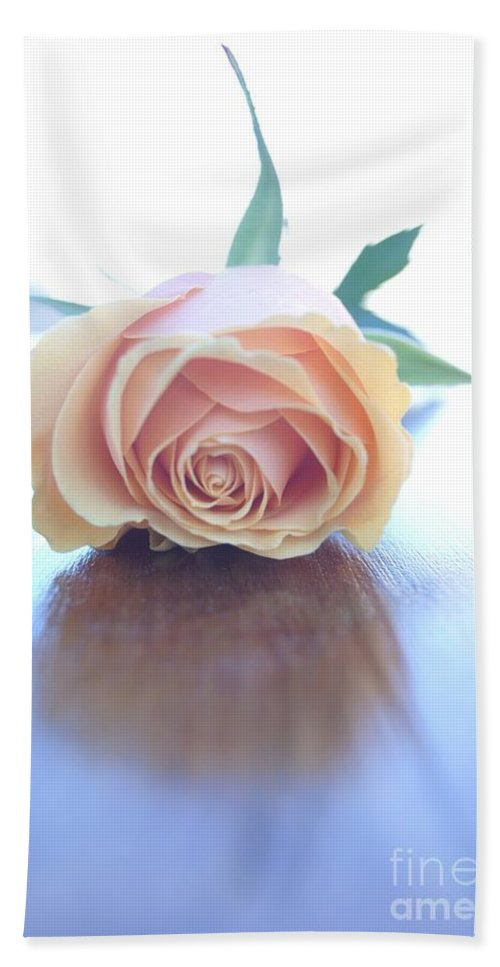 Roses Beach Towel featuring the photograph Serenity by Kerri Mortenson