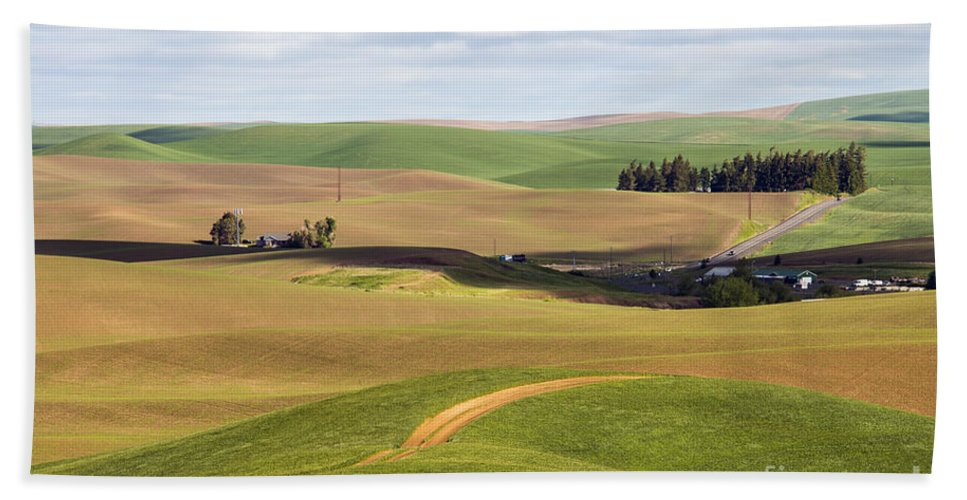 Palouse Area Beach Towel featuring the photograph Shadow Division by Bob Phillips