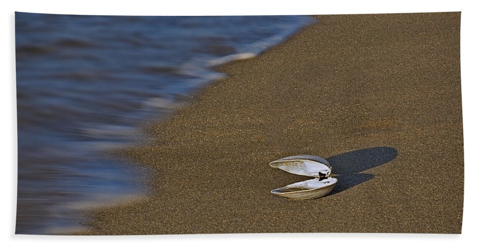 Sea Shell Beach Towel featuring the photograph Shell By The Shore by Susan Candelario
