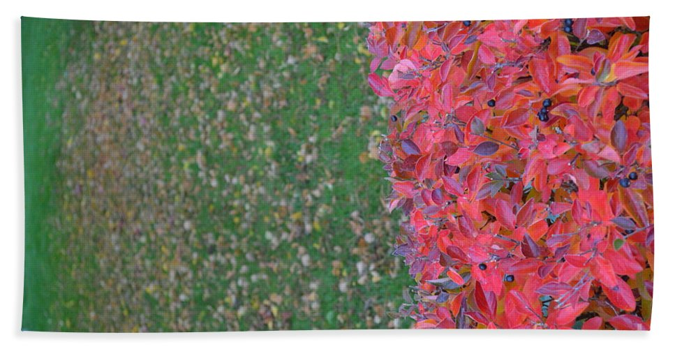 Oshifting Beach Towel featuring the photograph Shifting Into Winter by Brian Boyle