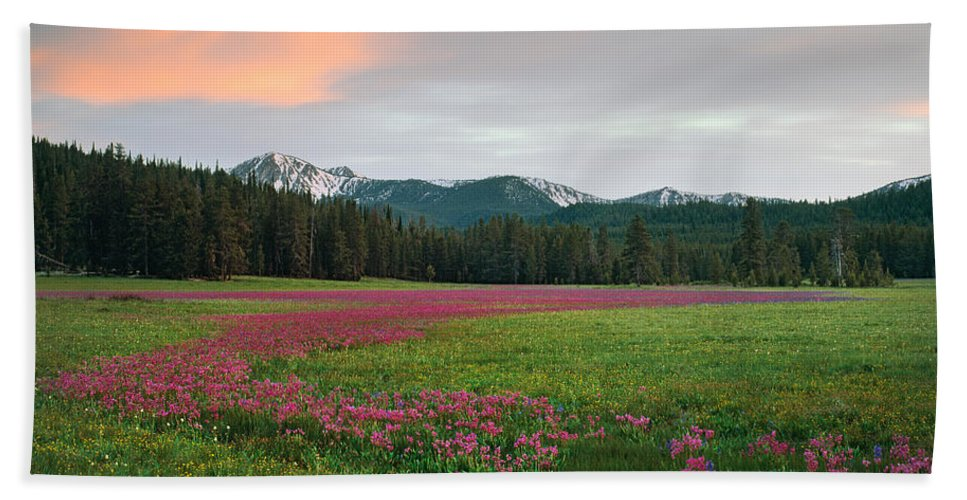 Idaho Scenics Beach Towel featuring the photograph Shooting Stars by Leland D Howard