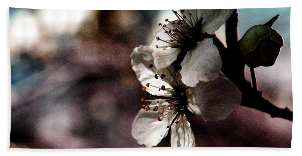 Flowers.macros Beach Towel featuring the photograph Side View Of White Flowers by Jeff Swan