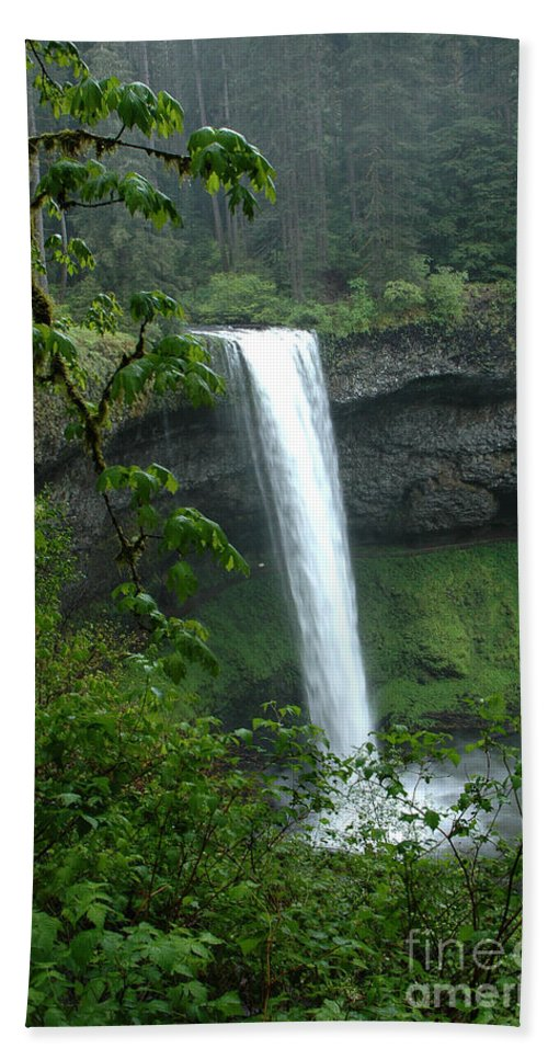 Silver Falls Beach Towel featuring the photograph Silver Falls 1 In Oregon by Mike Nellums
