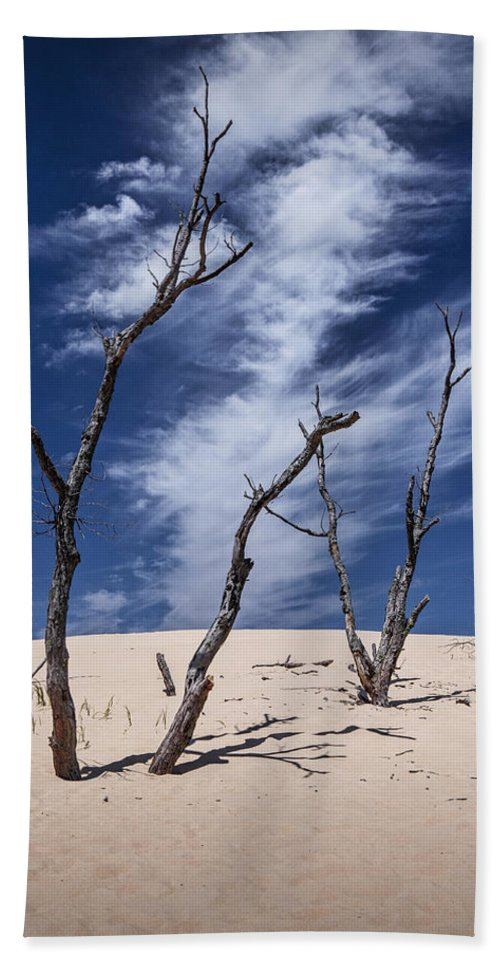 Art Beach Towel featuring the photograph Silver Lake Dune With Dead Trees And Cirrus Clouds by Randall Nyhof