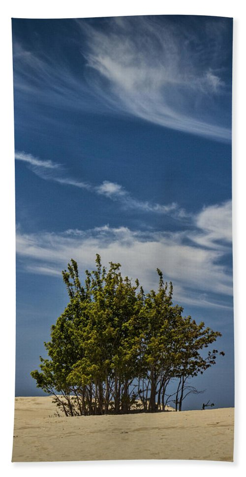 Art Beach Towel featuring the photograph Silver Lake Dune With Tree Grove And Cirrus Clouds by Randall Nyhof