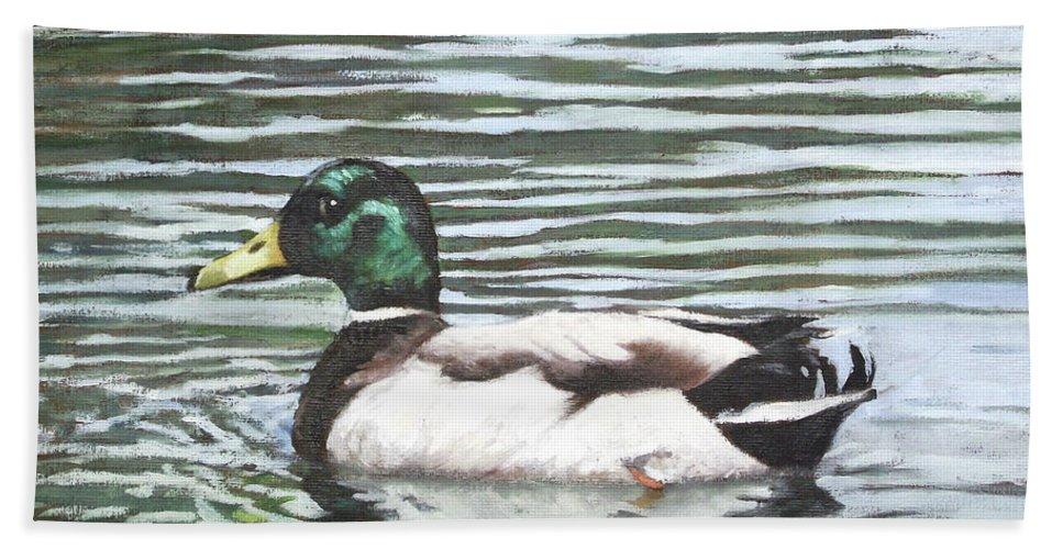Mallard Beach Towel featuring the painting Single Mallard Duck In Water by Martin Davey