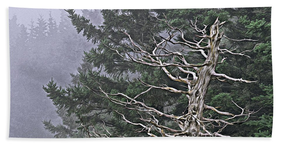 Skeletal Treescape Beach Towel featuring the photograph Skeletal Treescape by Marty Saccone