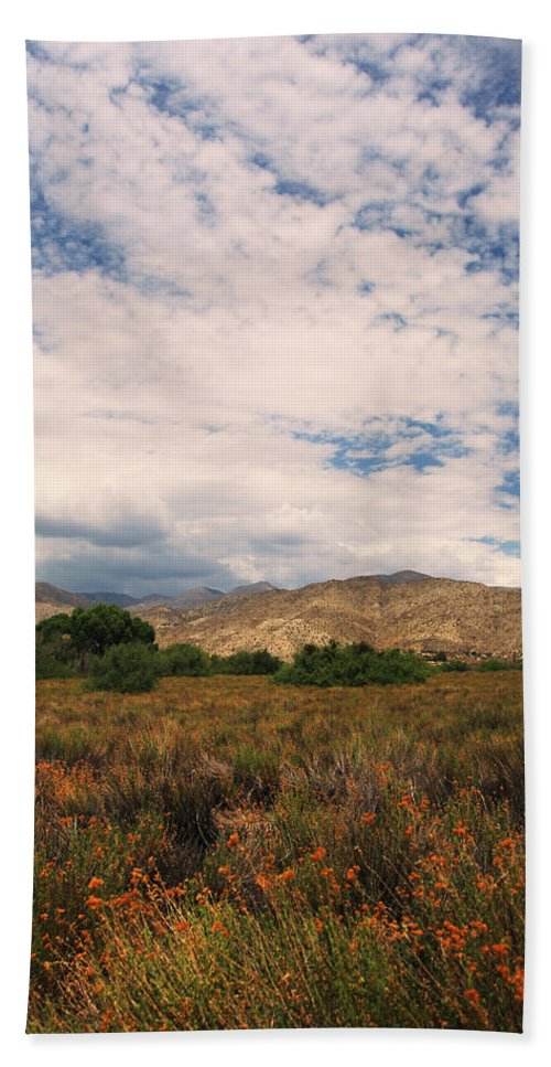 Big Morongo Canyon Preserve Beach Towel featuring the photograph Slowly I Tread by Laurie Search