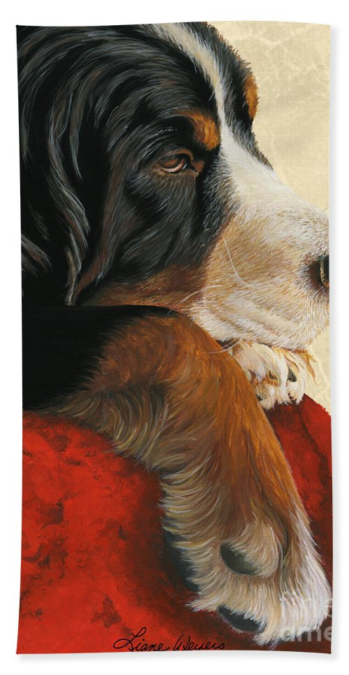 Bernese Mountain Dog Beach Towel featuring the painting Slumber by Liane Weyers
