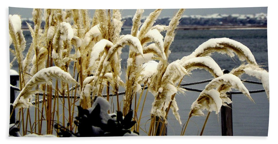Snow Beach Towel featuring the photograph Snow Dust by Karen Wiles