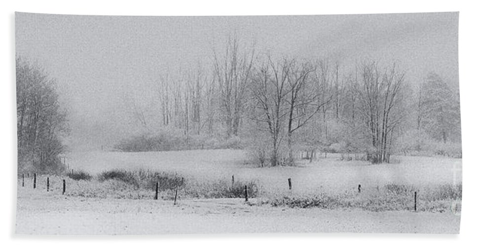 Michele Beach Towel featuring the photograph Snowy Fields by Michele Steffey