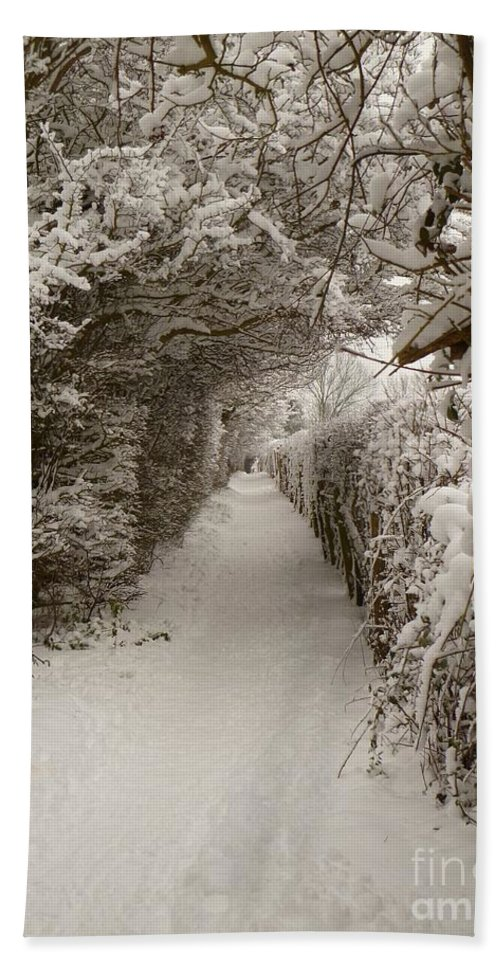 Snow Beach Towel featuring the photograph Snowy Path by Vicki Spindler