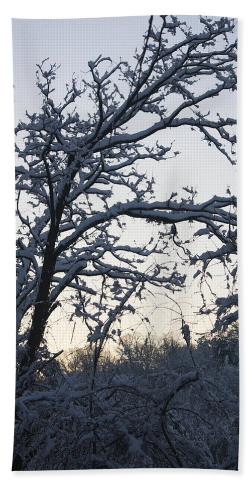 Snow Beach Towel featuring the photograph Snowy Sunrise by Teresa Mucha