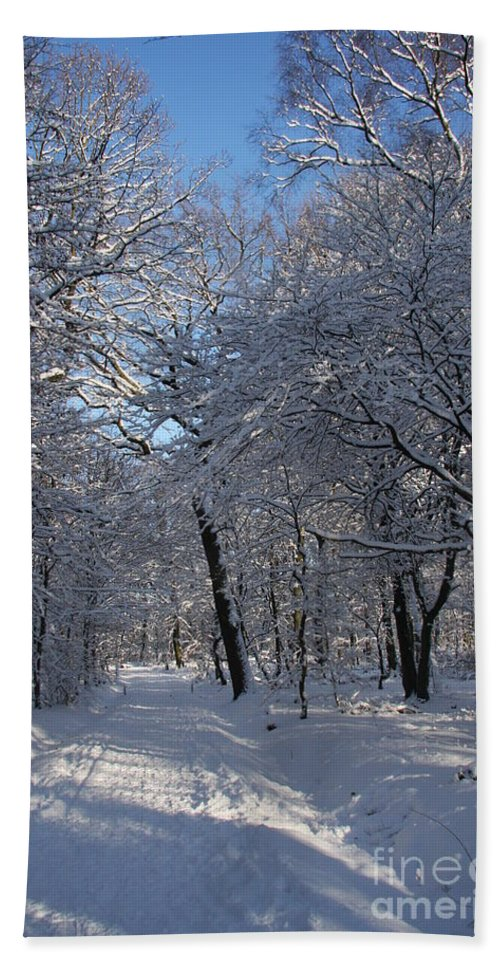 Forest Beach Towel featuring the photograph Snowy Trail by Christiane Schulze Art And Photography
