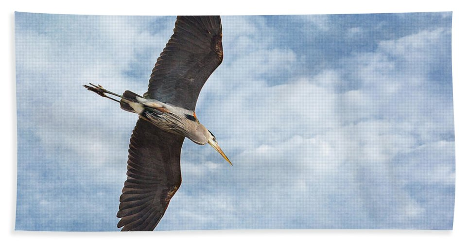 Soaring Beach Towel featuring the photograph Soaring by Dale Kincaid
