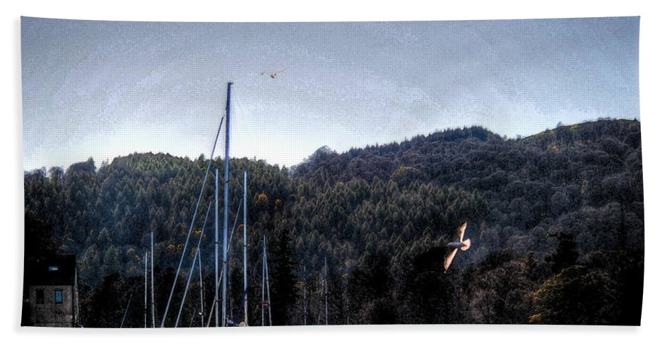 Boat House Beach Towel featuring the photograph Soaring by Doc Braham