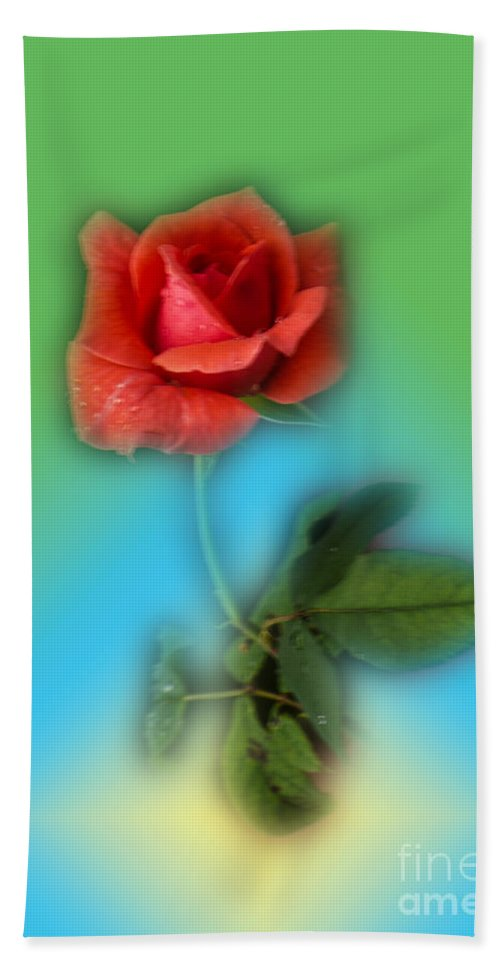 Rose Beach Towel featuring the photograph Soft by Donna Brown