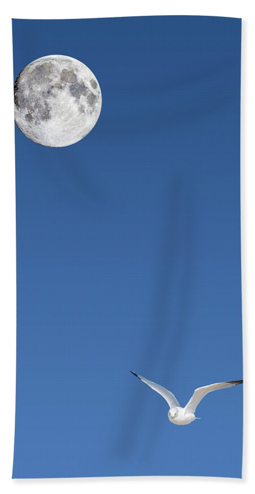 Solitude Beach Towel featuring the photograph Solitude by Michael Peychich