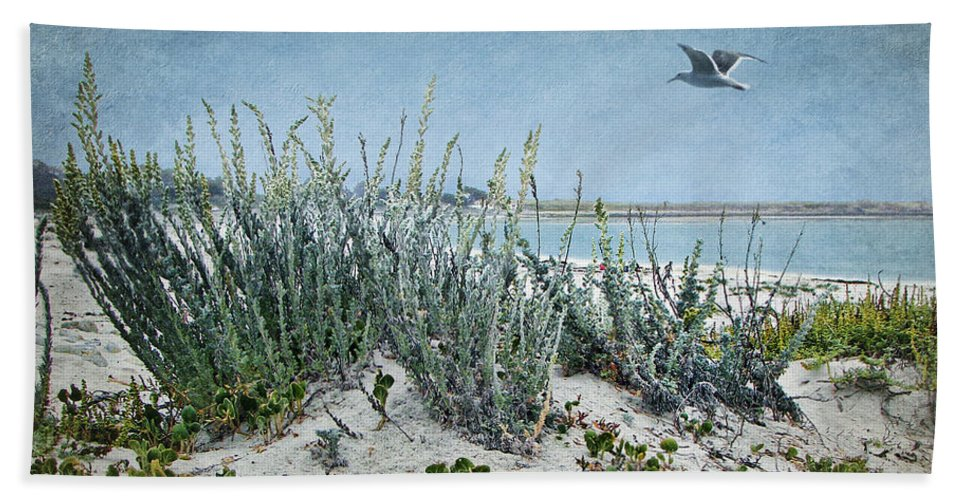 Gull Beach Towel featuring the photograph Solitude by Nikolyn McDonald
